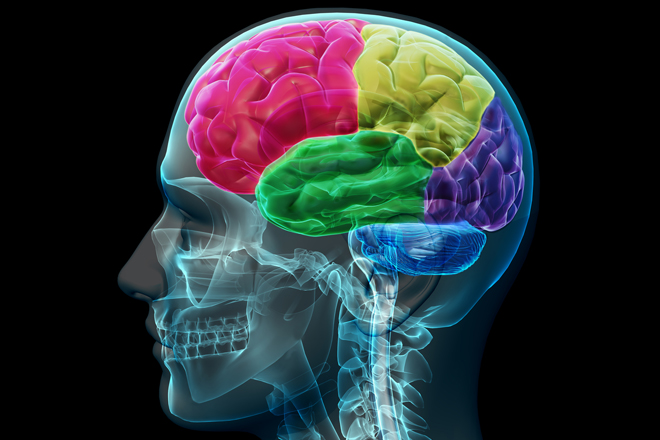 Traumatic brain injury can occur on an on the job accident. Call Morgan & Morgan for information about filing your injury under workers compensation today .