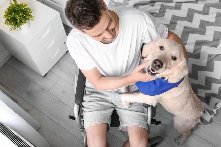 disability-pa
